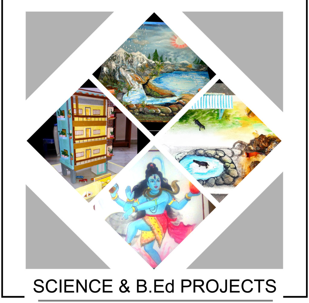 Science & B.Ed Project Works - Drawing Chart Paintings